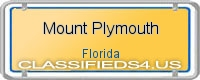 Mount Plymouth board